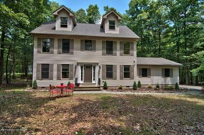 East Stroudsburg Single Family Home For Sale: 115 Shady Tree Dr