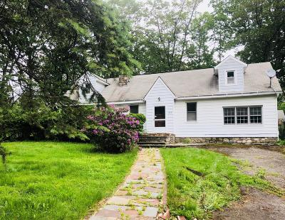Mount Pocono Single Family Home For Sale: 419 Manor View Ave