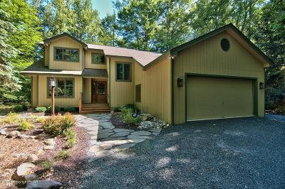 Pocono Pines Single Family Home For Sale: 274 Long View Ln