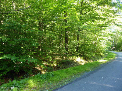 Pocono Pines PA Residential Lots & Land For Sale: $149,000