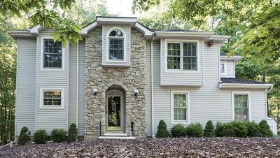 East Stroudsburg Single Family Home For Sale: 151 Reunion Rdg Rdg