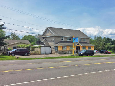 Monroe County Commercial For Sale: 1182 Pocono Blvd