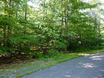 Residential Lots & Land For Sale: Lot 4 Black Bass Run