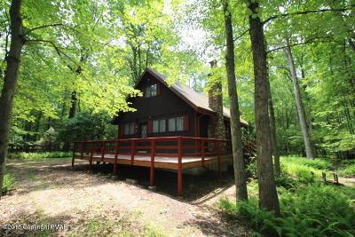 Jim Thorpe Single Family Home For Sale: 6 Hawthorne Dr