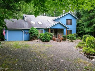 Pocono Pines Single Family Home For Sale: 308 Foxglove Pl