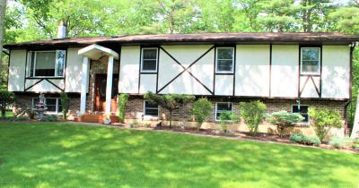 Single Family Home For Sale: 107 Ginko Ln