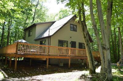 Pocono Lake Single Family Home For Sale: 7136 Winnebago Dr