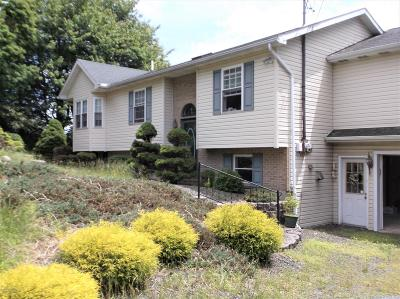 Long Pond Single Family Home For Sale: 609 Clearview Dr