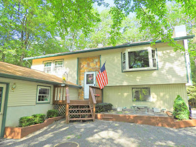 Pocono Summit Single Family Home For Sale: 1158 Thunder Drive
