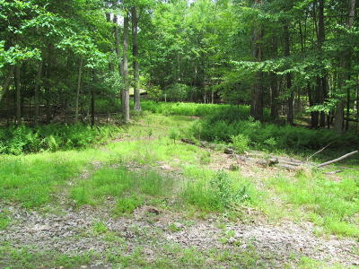 Cresco Residential Lots & Land For Sale: Spring Run Dr