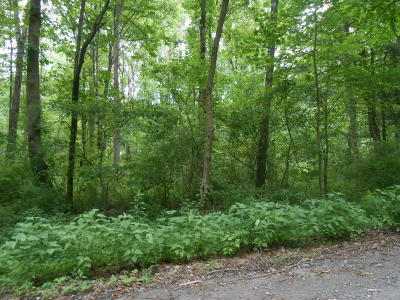 Stroudsburg Residential Lots & Land For Sale: 1 Davis Court