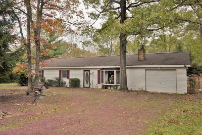 Jim Thorpe Single Family Home For Sale: 38 Fox Ln