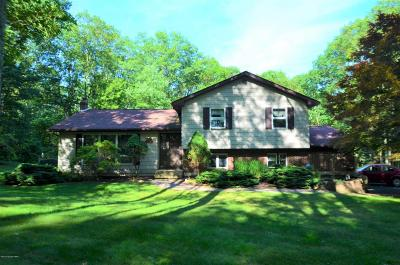 Stroudsburg Single Family Home For Sale: 526 Executive Dr