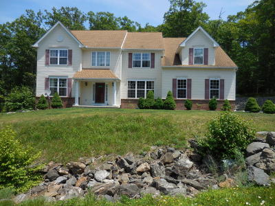 East Stroudsburg Single Family Home For Sale: 3116 Hollow Drive