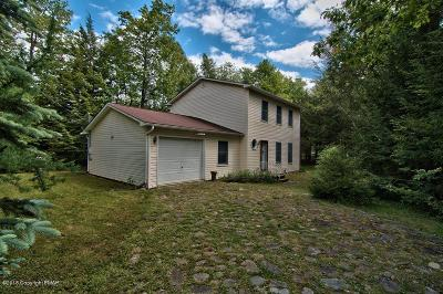 Pocono Summit Single Family Home For Sale: 217 Nadine Blvd