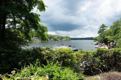Lake Harmony Single Family Home For Sale: 99 N Lake Dr