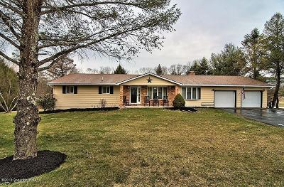 Kunkletown Single Family Home For Sale: 3522 Sunset Cir
