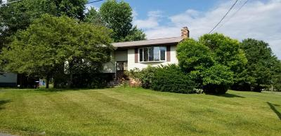 Kunkletown Single Family Home For Sale: 3401 Walnut Rd