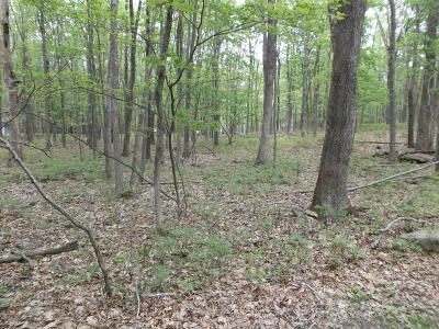 East Stroudsburg Residential Lots & Land For Sale: 42/43 Terrapin Trl
