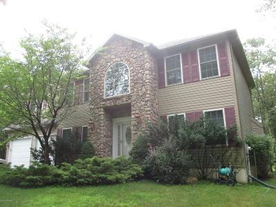 Albrightsville Single Family Home For Sale: 177 Jonas Mountain Dr