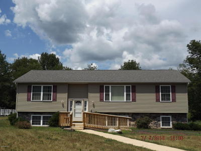 Stroudsburg Single Family Home For Sale: 123 Michaels Run Run