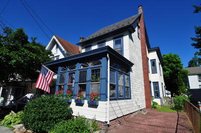 Jim Thorpe Single Family Home For Sale: 133 South St