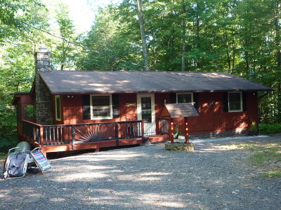 Locust Lake Village Single Family Home For Sale: 286 White Pine Dr.
