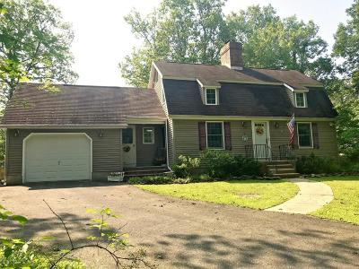 East Stroudsburg Single Family Home For Sale: 196 Sunset Road