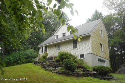 East Stroudsburg Single Family Home For Sale: 215 Spring Brook Rd