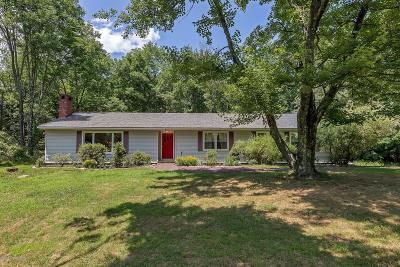 East Stroudsburg Single Family Home For Sale: 619 Fish Hill Rd