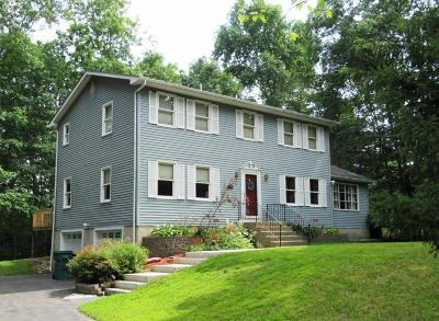 East Stroudsburg Single Family Home For Sale: 186 Gabriel Dr