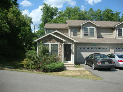 Stroudsburg Single Family Home For Sale: 103 Holmgren Dr