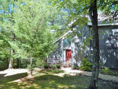 Lake Harmony Single Family Home For Sale: 36 Free Style
