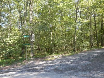 East Stroudsburg Residential Lots & Land For Sale: 1-2-3 Lake Shore Dr