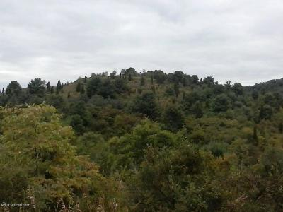 Saylorsburg Residential Lots & Land For Sale: Lot 6 Gower Dr