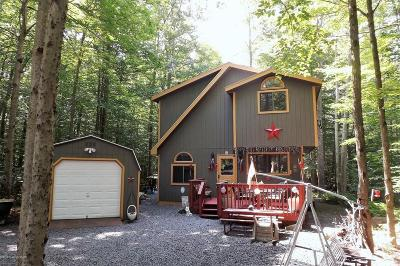 Pocono Lake Single Family Home For Sale: 202 Choctaw Dr