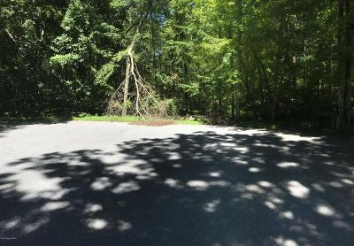 Stroudsburg Residential Lots & Land For Sale: LOT # 4 Rustic Ct