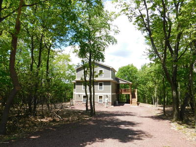 Lake Harmony Single Family Home For Sale: 67 Skye Dr