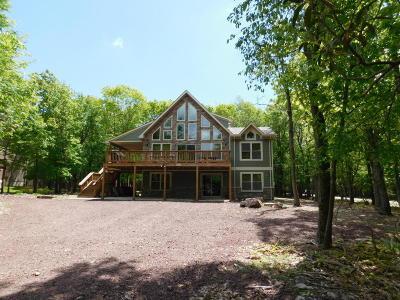 Lake Harmony Single Family Home For Sale: 64 Skye Dr