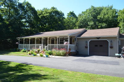 Jim Thorpe Single Family Home For Sale: 56 Sweet Briar Ln
