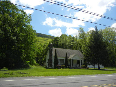 Tannersville Commercial For Sale: 173 Camelback Rd