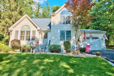 East Stroudsburg Single Family Home For Sale: 294 Eastshore Drive
