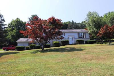 Palmerton Single Family Home For Sale: 290 Peter Ave