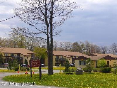 Mount Pocono Single Family Home For Sale: 113 Snowshoe Ct #202