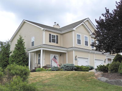 Tannersville Single Family Home For Sale: 549 Upper Deer Valley Rd