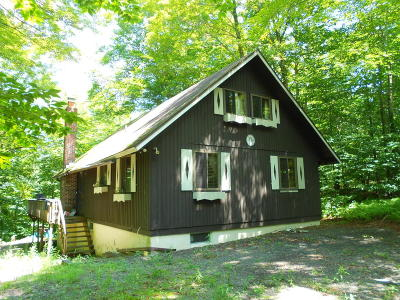 Gouldsboro Single Family Home For Sale: 121 Mountainside Dr