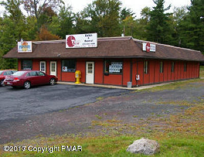 Blakeslee Commercial For Sale: 5270 Route 115