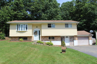 Stroudsburg Single Family Home For Sale: 1308 Kroucher Rd