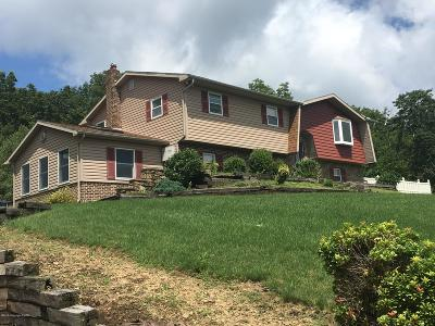 Jim Thorpe Single Family Home For Sale: 301 Maury Rd
