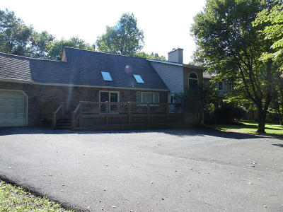 Towamensing Trails Single Family Home For Sale: 705 Old Stage Rd